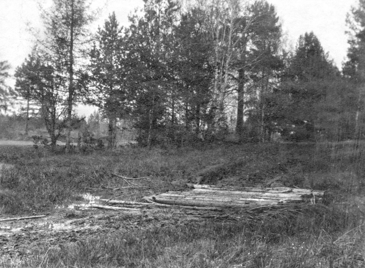 Baumstämme Auf Dem Grab. Quelle: Https://de.wikipedia.org
